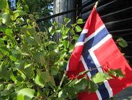 17-mai-flagg