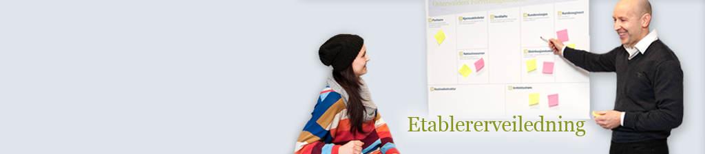 etablererveiledning2_banner