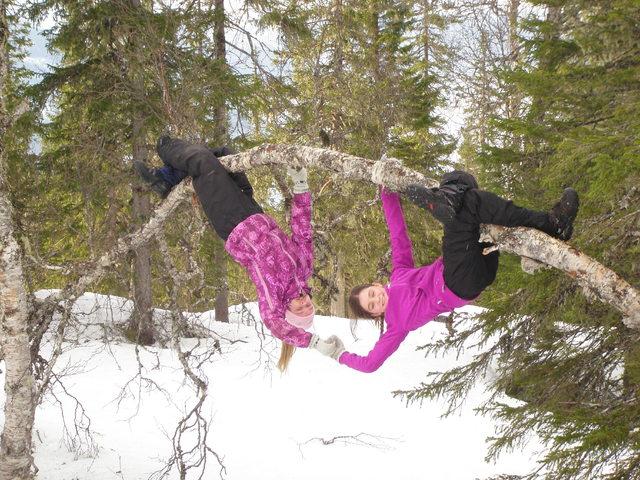 Finneidfjord skole i full vigor for folkehelsen Hemnes kommune