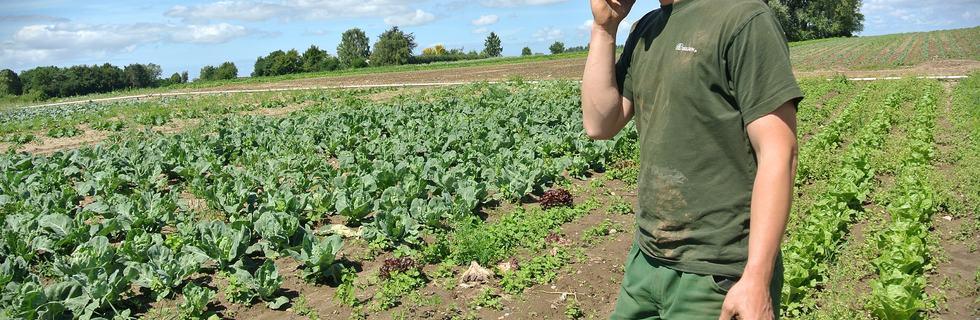 farmer-657343