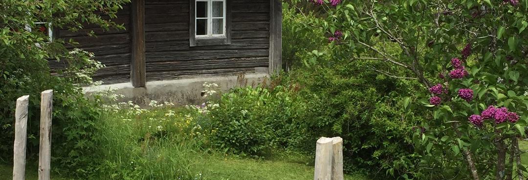 Sommer i Prøysen