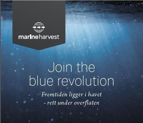 Marine Harvest_join the blue revolution.jpg