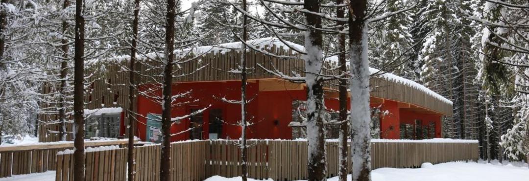 Prøysenhuset vinter