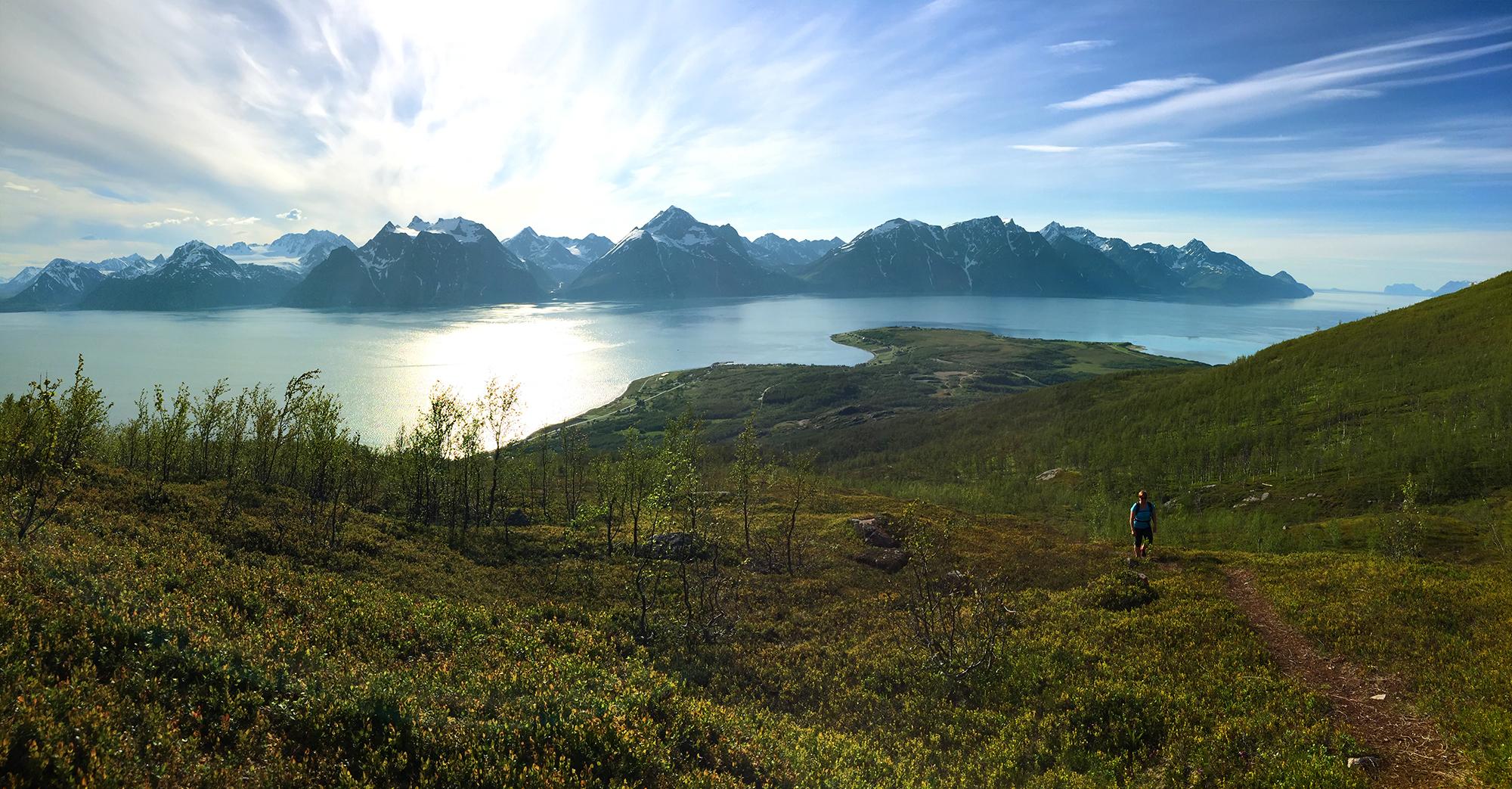 Utsikt fra Dalberget i Djupvik Foto_JKN.jpg