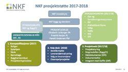 NKF prosjektstøtte