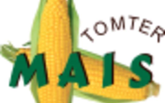 logo-tomtermais-90x90