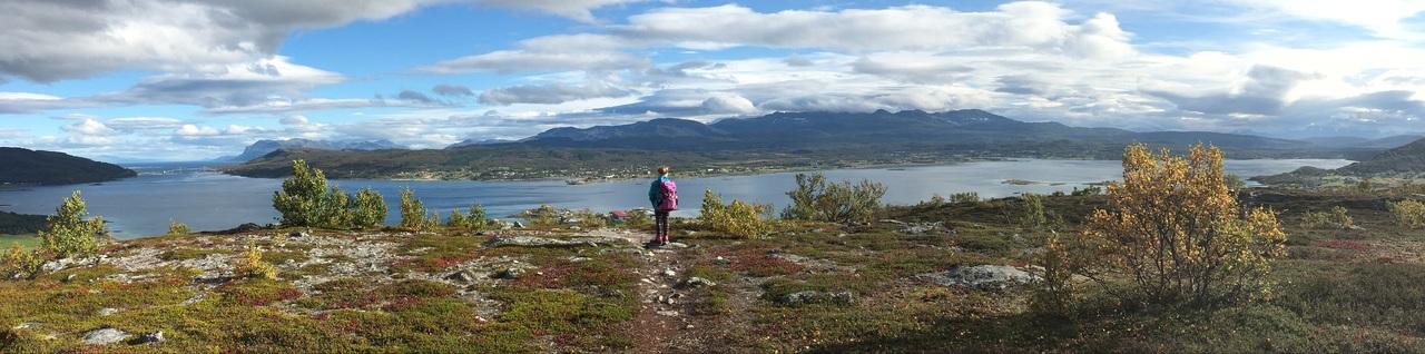 Høst fra Hårberget klippet.Bente Nygård