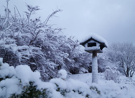 Så kom snøen