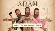 medium_171124-mellom_barken_og_feen_1920x1080_skjerm