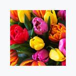 999101_blomster_bukett_buketter