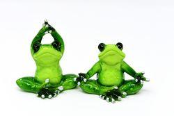 yoga-frosker