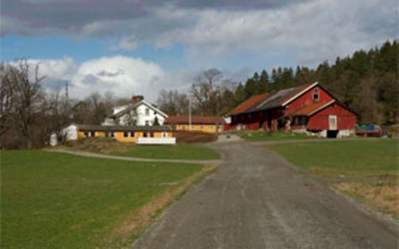 Foto: Frank Nergård