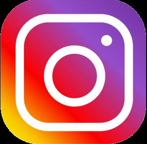 instagram-logo-vector-png-7-300x294.png