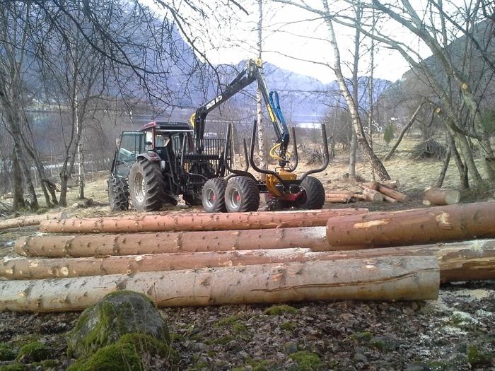 tømmervogn og gran_700x525