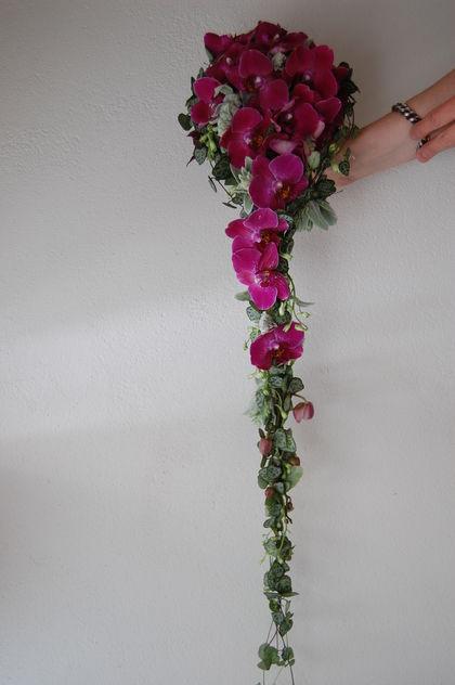 orchidebrud