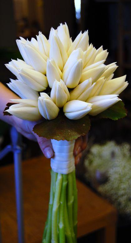 tulipanbrud
