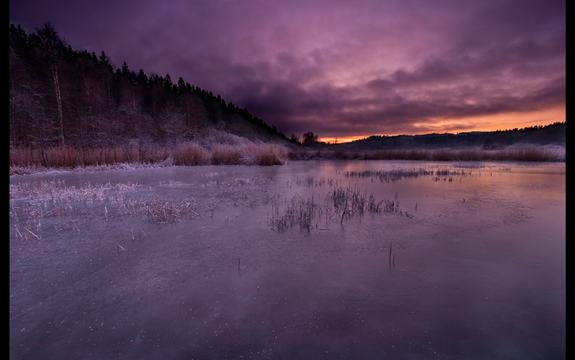 Pollevannet en kald desember kveld.