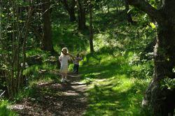 Illustrasjon Turbok 2011 - Barn på skogstur