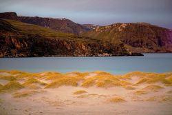 Finvik sanddynevoller