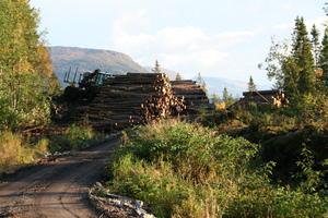 redigertfinneidfjord 003_300x200.jpg