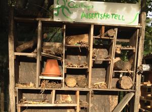 Insekthotell-crop300x222.jpg