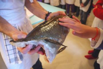Barn-kjenner-fisk-ingr
