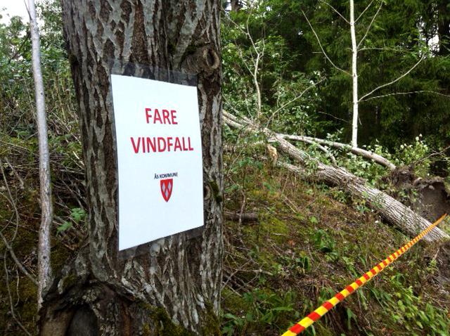 Fare vindfall Breivoll