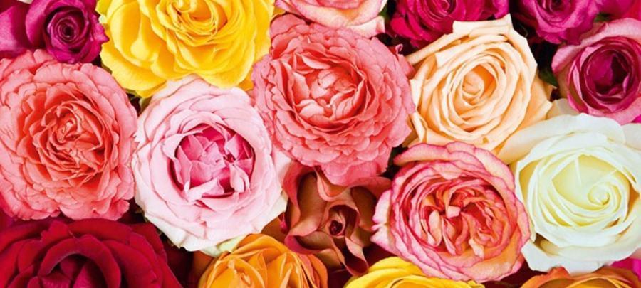 Blomster!
