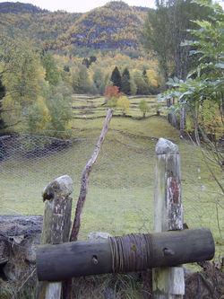 Løypestreng og bakkemurar i Fresvik