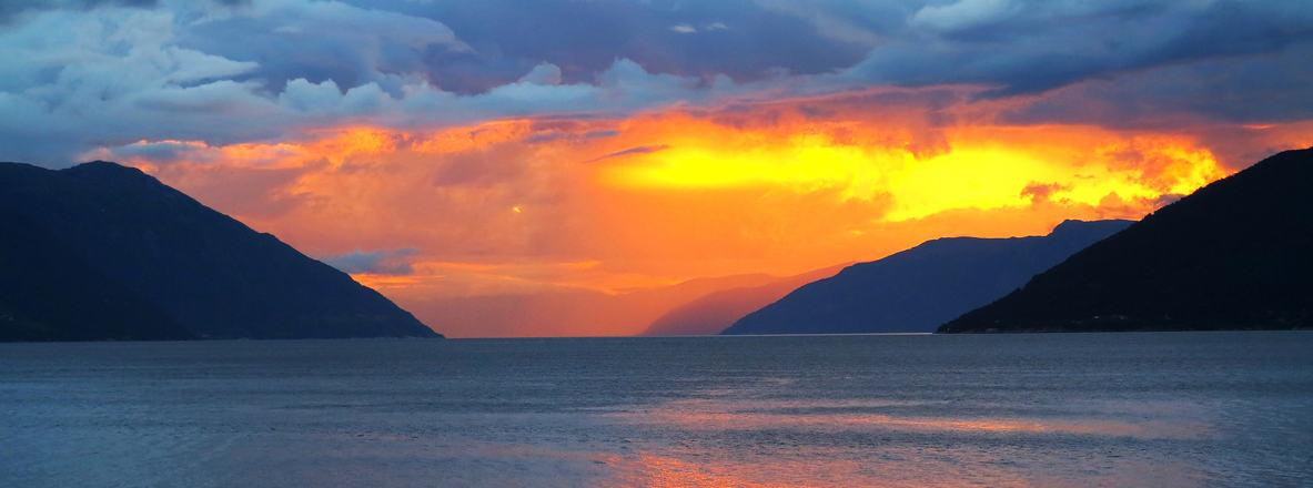 Sognefjorden i gult IMG  2609