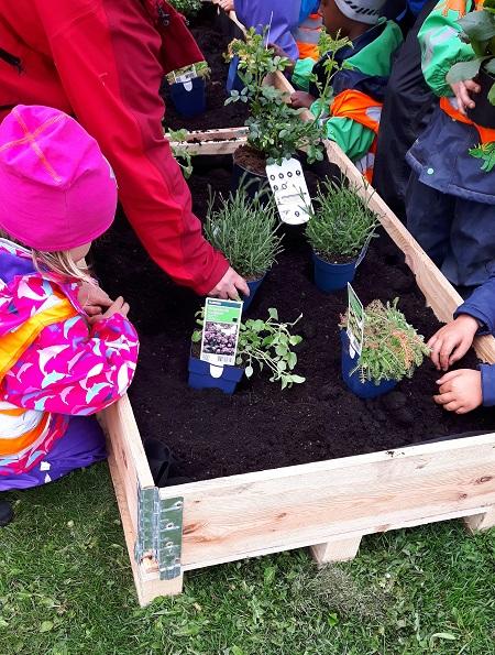 Barnehagebarn planter i Rådhusparken.jpg
