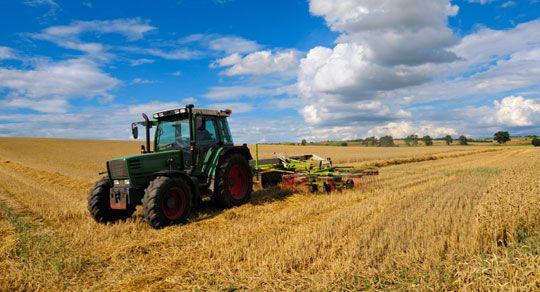 landbruk