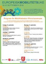 Program, Europeisk mobilitetsuke
