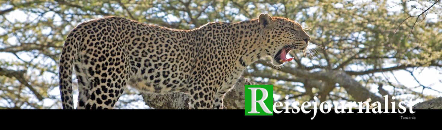 Topp 1280x377 Tanzania