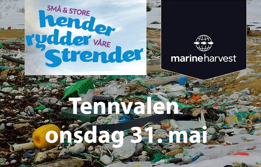 Strandrydding i Tennvalen