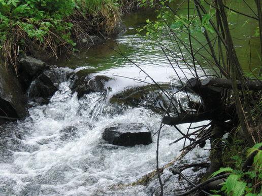 Bilde av vann og bekk