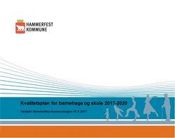 Kvalitetsplan for skole og barnehage 2017-2020