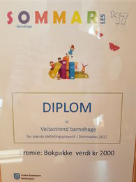 Vinnar av sommarles 2017 - Veitastrond