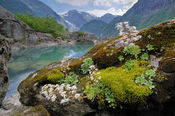 Bondhusdalen med bergfrue foto Jan Rabben