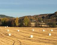 Jorde Roa høst