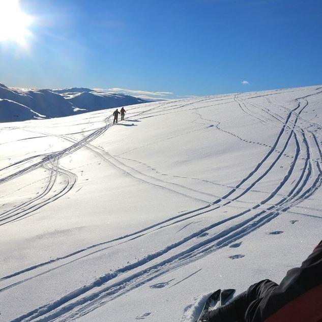 vinterbilete  H Grønningsæter
