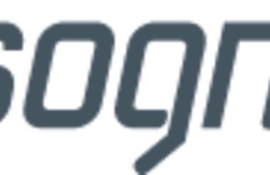 Logo Sognenett