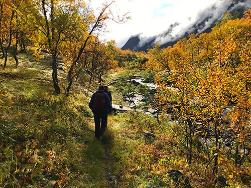 Illustrasjon Bilde fra Skardalen