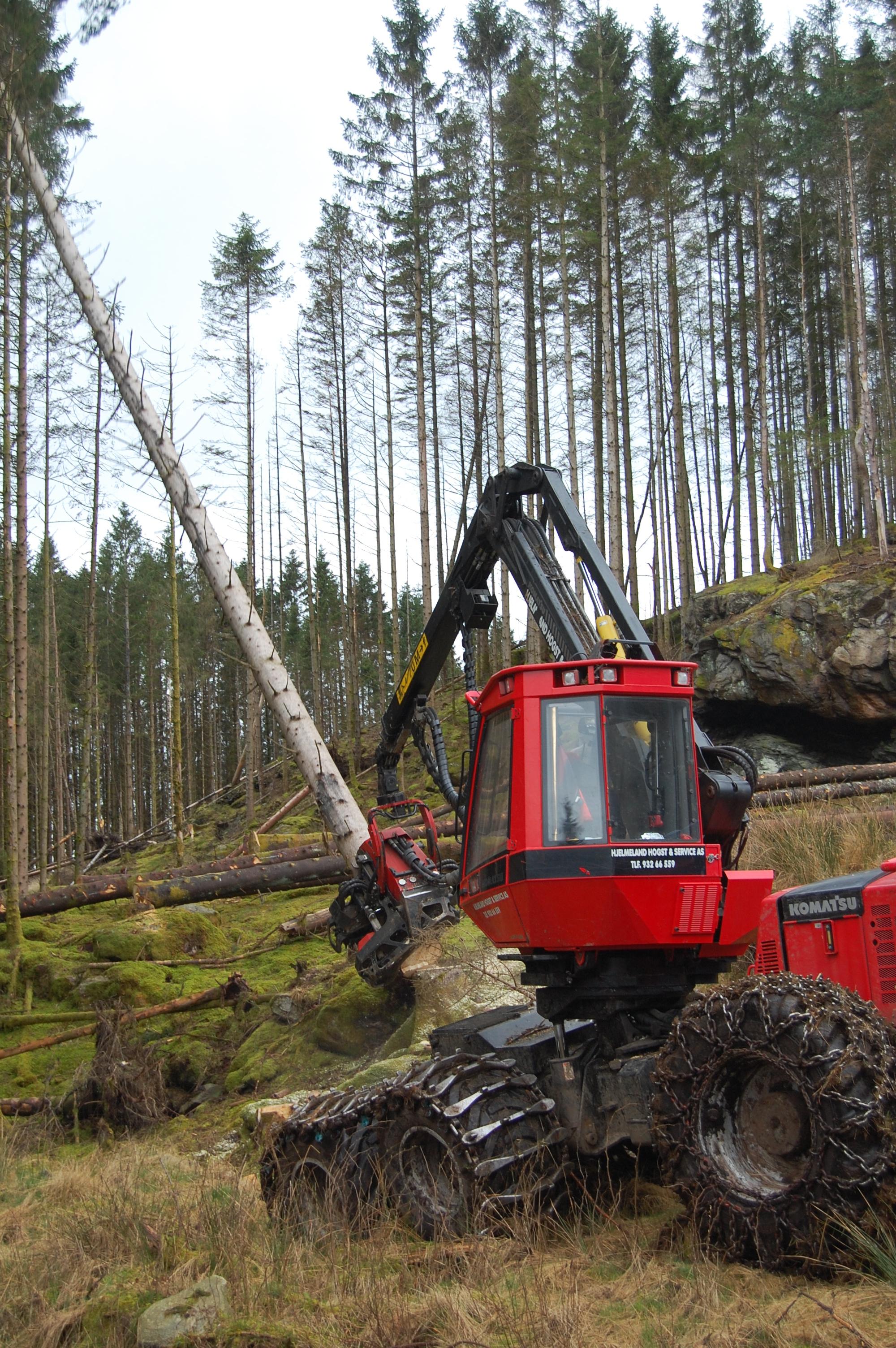 Tømmerhogst maskin