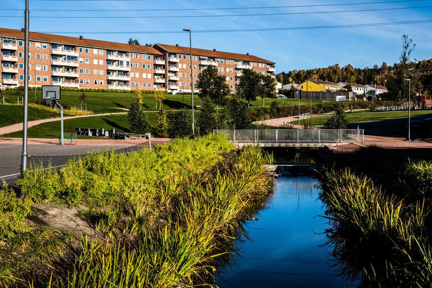 Bjerkedalen park