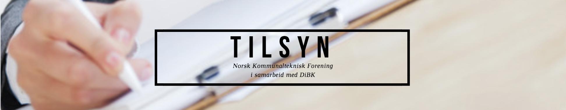 FORSIDEBILDE TILSYN 4