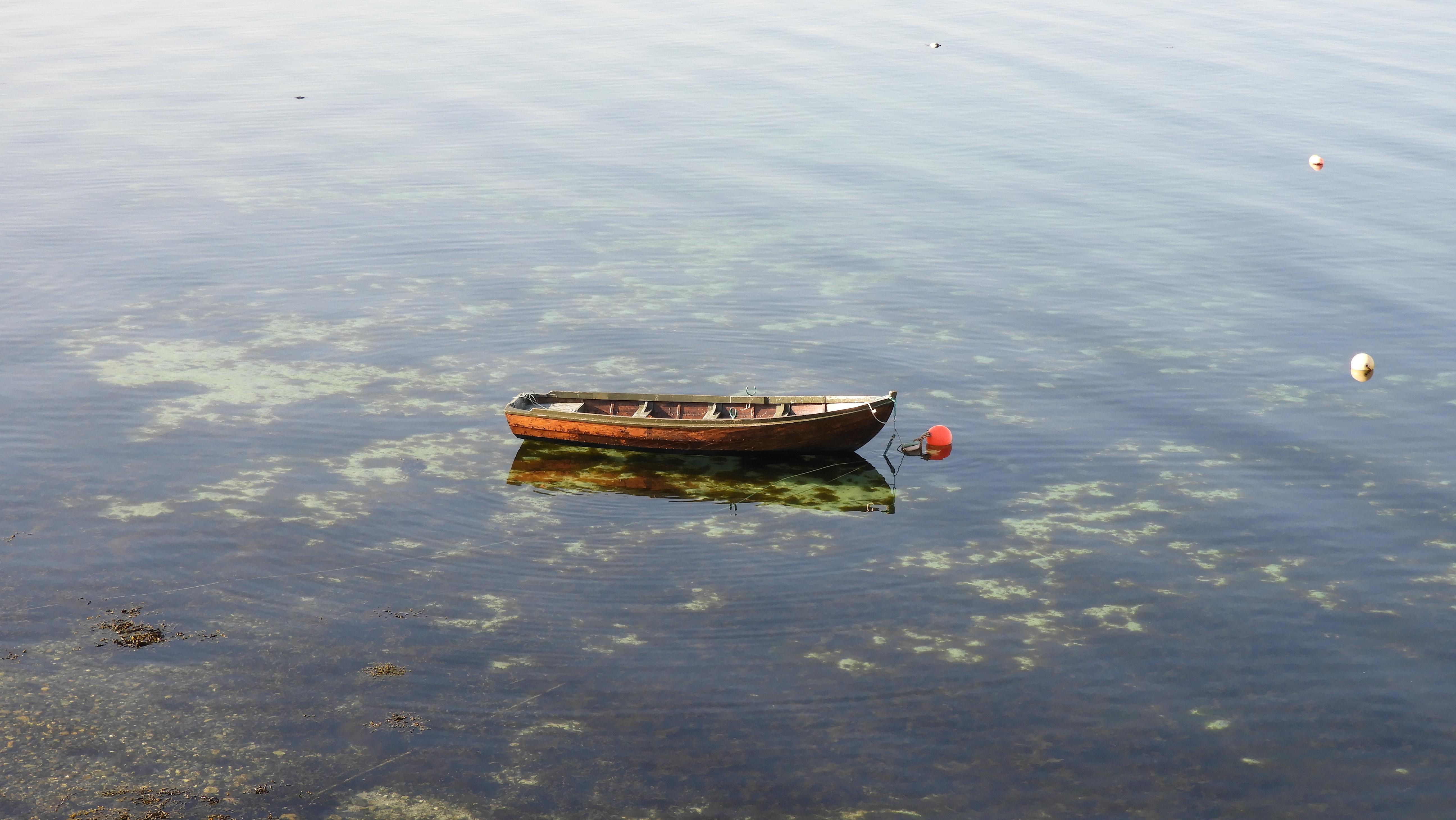 Foto: Bjørn Roald Storrø