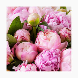 999055_blomster_peoner