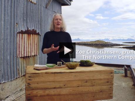 Fra video om innovasjon i Træna kommune.