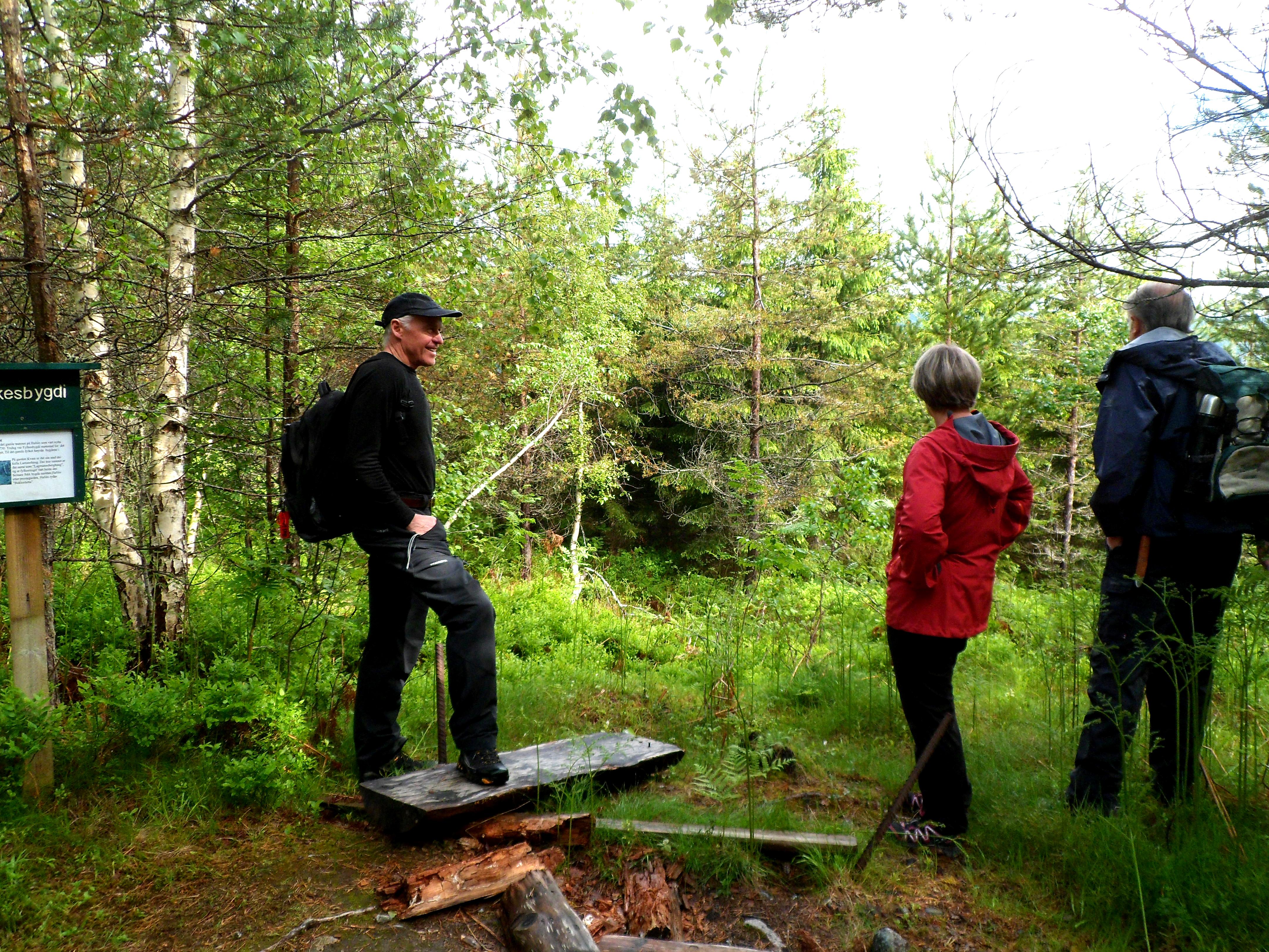 turstien Hafslo - Årøy.jpg